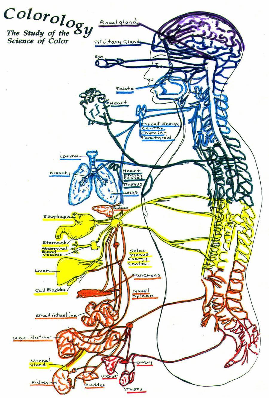 Chakra Balancing, Caryl Dennis, Psychic Exercises